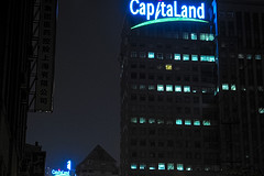 CapitaLand to skip real estate India